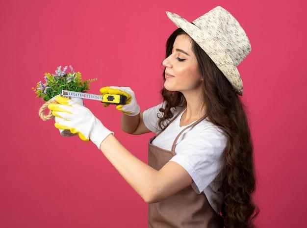 Erfreute junge gärtnerin in uniform mit gartenhut und handschuhen, die blumentopf mit maßband messen, isoliert auf rosa wand mit kopienraum