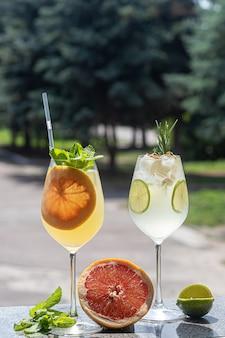 Erfrischende sommercocktails mit einer limettenscheibe. alkoholisches getränk. mit einem zweig minze, zitrusfrüchten und eiswürfeln garniert. in der bar.