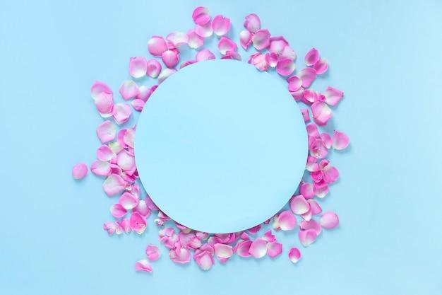 Erhöhte ansicht des kreisrahmens umgeben mit den rosa rosafarbenen blumenblättern über blauem hintergrund