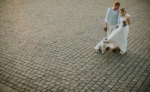 Erhöhte ansicht des süßen jungen brautpaares mit ihrem jack russel terrier hund