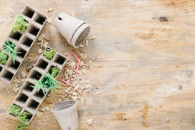 Erhöhte ansicht des torftopfes; torfschale; kleine pflanze; kreide; samen über holztisch