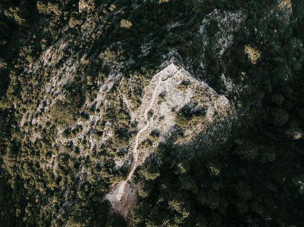 Erhöhte ansicht von bäumen auf felsigem berg