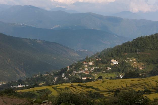 Erhöhte ansicht von häusern auf einem hügel, thimphu, bhutan