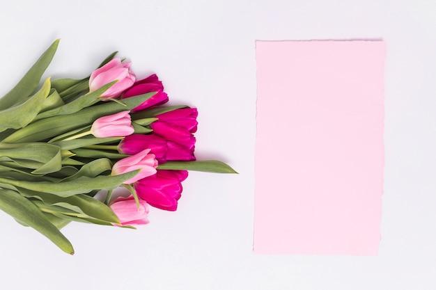 Erhöhte ansicht von rosa tulpenblumen und von leerem papier über weißem hintergrund