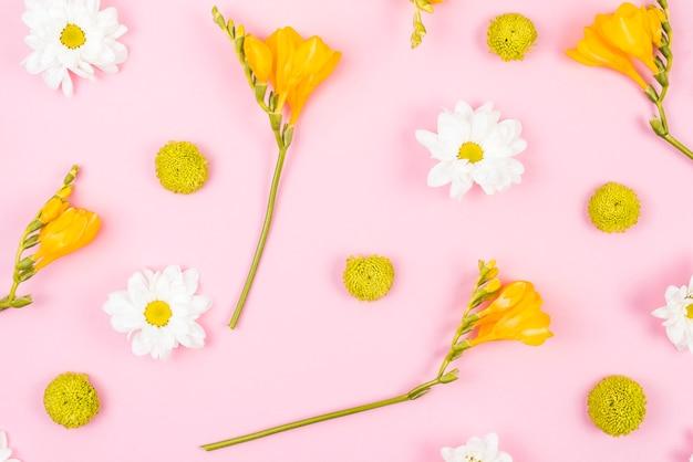 Erhöhte ansicht von weißen und gelben blumen auf rosa hintergrund