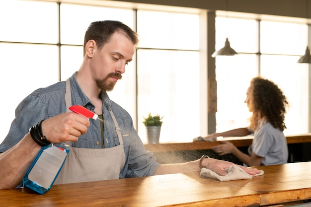 Ernster junger bärtiger mann in der schürze sprüht waschmittel auf bartheke, während er es im café reinigt