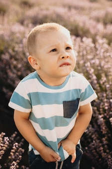 Ernstes kaukasisches kind, das oben schaut und sein t-shirt in einem lavendelfeld berührt