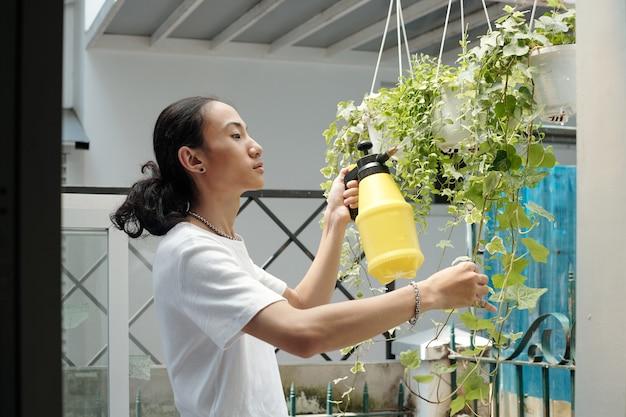 Ernsthafter hübscher junger mann, der efeupflanzen in hängenden töpfen mit wasser besprüht