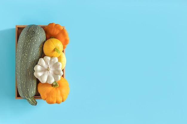 Ernte gemüsekürbis, zucchini, kürbis in einer holzkiste auf blau