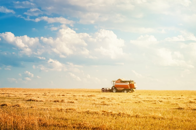 Erntemaschine, die auf dem gebiet am sommertag arbeitet