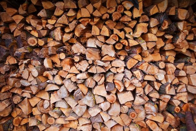 Ernten des brennholzes im freien, landschaft