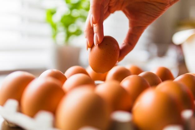 Ernten sie die hand, die eier vom karton nimmt