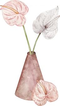 Erröten sie rosa und weiße tropische blumen - anthurien in einer keramikvase. exotische aquarellillustration.