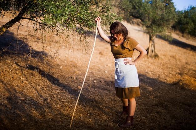 Erschöpfter weiblicher landwirt, der mit stock auf einem gebiet der olivgrünen obstgärten steht