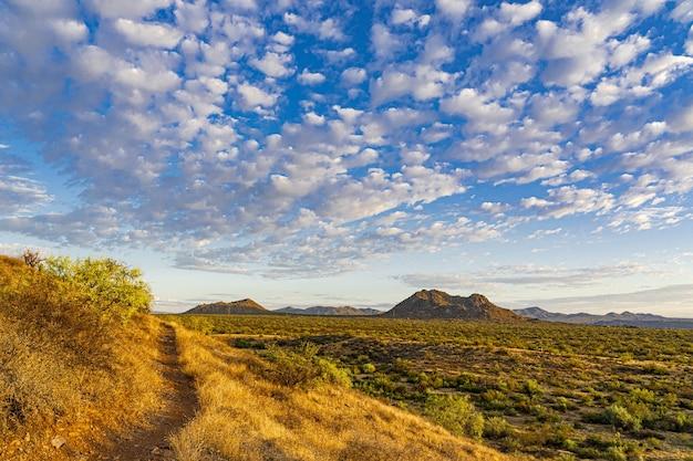 Erstaunliche aufnahme einer wunderschönen wiese mit majestätischen bergen auf der oberfläche