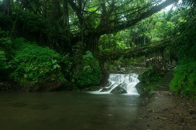 Erstaunliche aufnahme eines kleinen wasserfalls, umgeben von wunderschöner natur