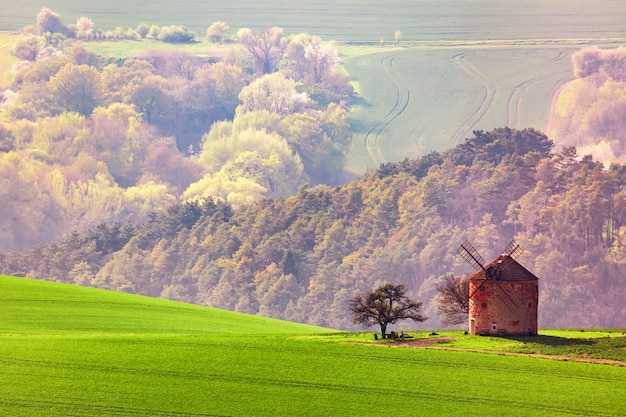 Erstaunliche landschaft von mährischen feldern mit alter windmühle in südmähren, tschechische republik.