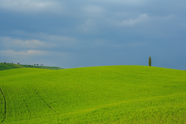 Erstaunliche rolling hills toskana italien