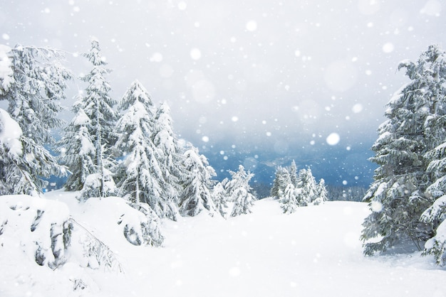 Erstaunliche winterlandschaft mit verschneiten kleinen tannenbäumen
