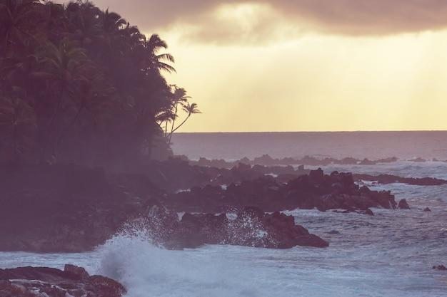 Erstaunlicher hawaiianischer strand. welle im ozean und vulkanischer lavaküstelava