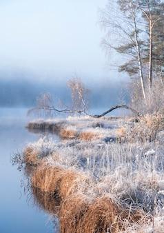 Erster frost auf einem nebligen waldsee mit einer schönen birke am ufer, herbstlandschaft am hellen morgen
