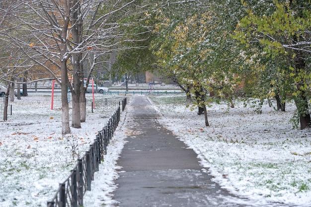 Erster schnee auf grünen blättern