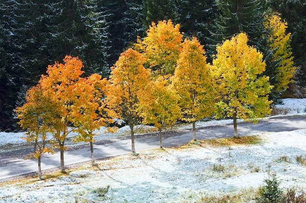 Erstes winterschnee und buntes herbstlaub nahe gebirgssekundärstraße, karpaten, ukraine