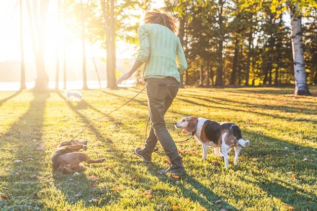 Erwachsene gehende frau die hunde am park