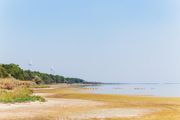 Erzeugung von windenergie an der küste