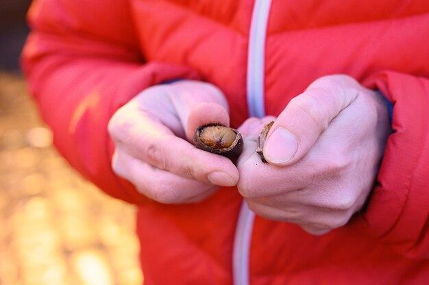 Essbar geröstete rote kastanien in den händen eines mannes auf der straße.