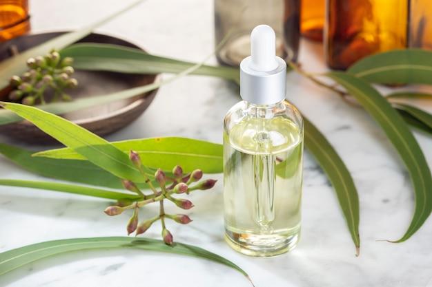 Eukalyptus ätherisches öl. eukalyptusöl für hautpflege, aromatherapie, spa, kräutermedizin