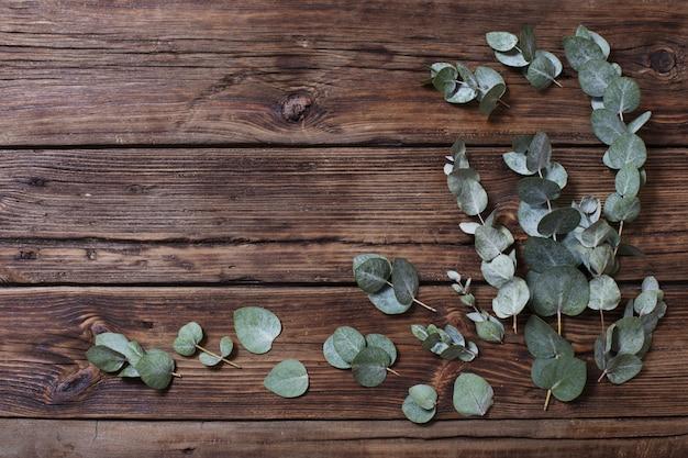 Eukalyptus auf altem dunklem hölzernem hintergrund