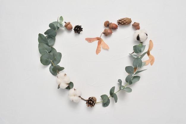 Eukalyptus lässt herzrahmenliebe auf weißem hintergrund mit kegeln