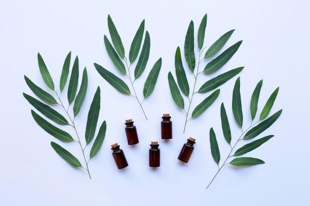 Eukalyptusölflasche mit blättern auf weißem hintergrund.