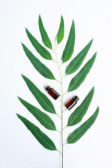 Eukalyptusölflasche mit eukalyptusniederlassung auf weißem hintergrund.