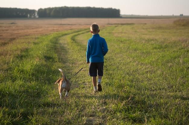 Europäischer junge, der mit einem beagle-hund an der leine im sommer auf der natur läuft