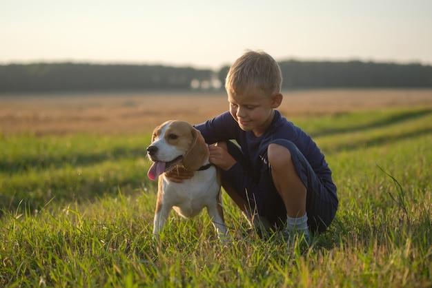 Europäischer junge mit einem beagle auf einem spaziergang an einem sommerabend