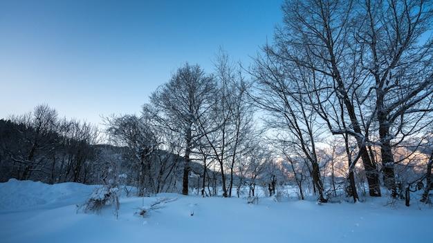Exotischer berg mit winterlandschaft