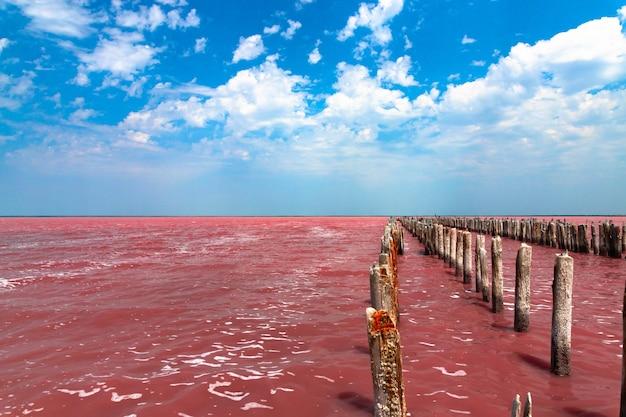 Exotischer rosa salzsee und blauer himmel mit wolken. foto in hoher qualität