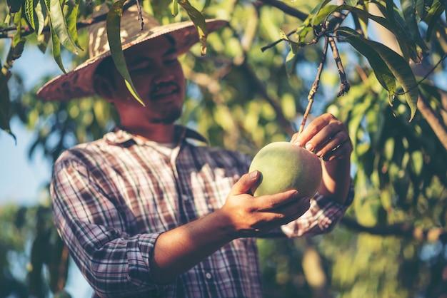 Experimente zum pflanzenanbau im haus zur erziehung