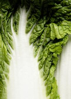 Extremes nahaufnahmeblatt des salats