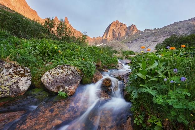 Fabelhafte gebirgsbäche, üppiges grün und blumen. aufgetautes quellwasser aus den bergen. magische aussicht auf hohe berge, almwiesen