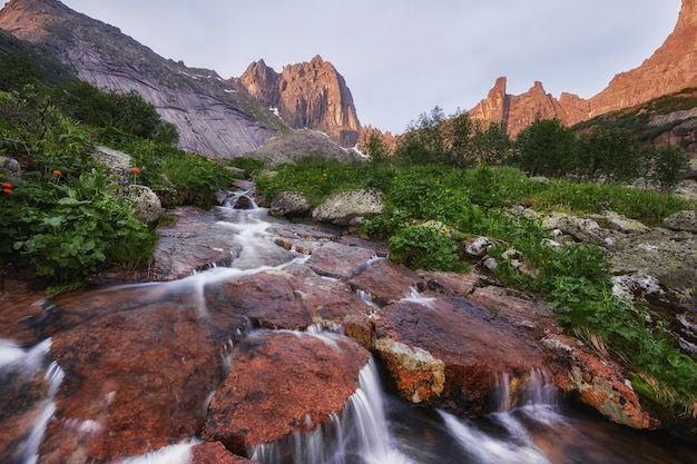Fabelhafte gebirgsbäche, üppiges grün und blumen ringsum. aufgetautes quellwasser aus den bergen. zauberhafte aussicht auf hohe berge, almwiesen