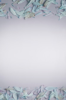 Fabelhafter rahmen des oberen oder unteren rahmens des frühlings- oder sommerrahmens mit blütenblättern in flieder- und blautönen, auf einem cremefarbenen matten hintergrund.