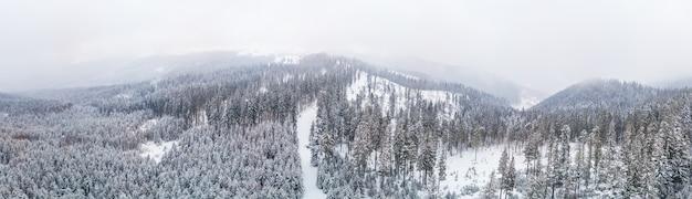 Fabelhaftes schneebedecktes panorama von fichten, die im winter bei bewölktem nebelwetter auf den berghängen wachsen. wintersport- und skigebietskonzept