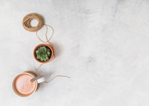 Faden, kaktus und kaffee