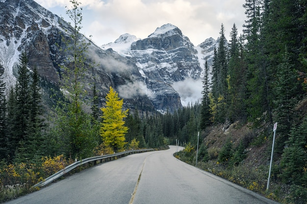 Fahren auf der autobahn mit felsigen bergen im herbstwald am moraine lake