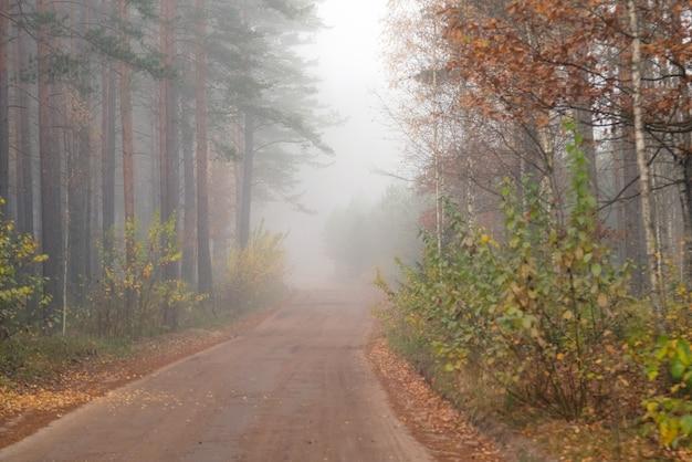 Fahren auf sandiger landstraße im nebel.