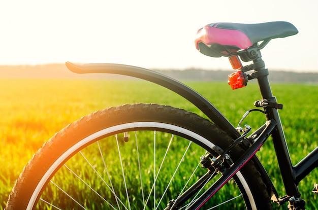 Fahren sie auf naturabschluß oben, reise, gesunder lebensstil, landweg rad
