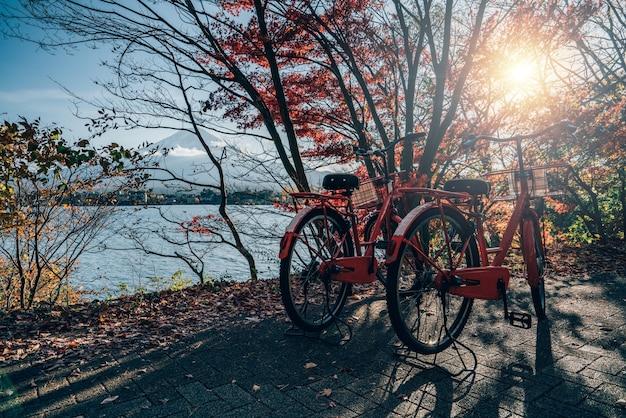 Fahrrad am fuji-berg-rotahornbaum